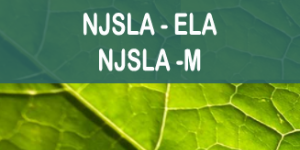 Image result for njsla