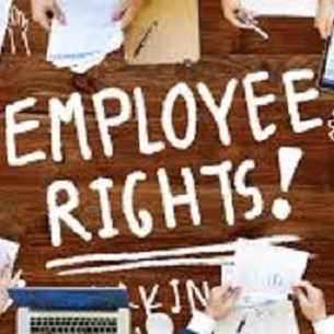 Employee Rights COVID 19